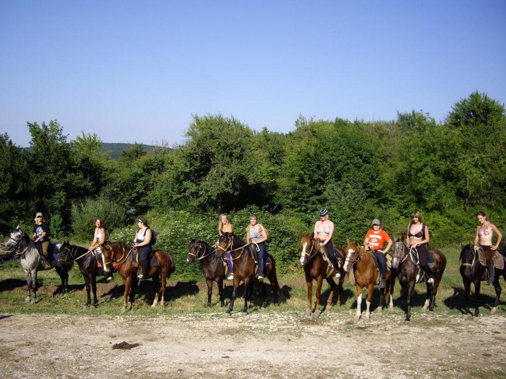 Конные прогулки - Ознакомительный круг
