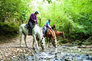 Конные прогулки Адыгея
